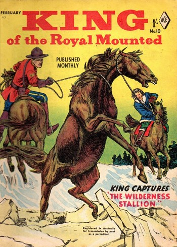 The Wilderness Stallion (Cover)