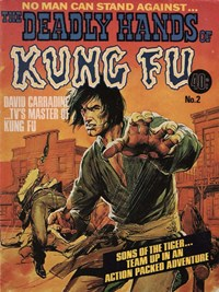 The Deadly Hands of Kung Fu (KG Murray, 1975 series) #2 — David Carradine…TV's Master of Kung Fu (Cover)